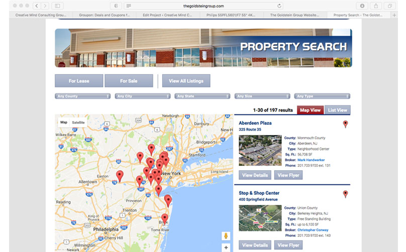 The Goldstein Group Listings Page Sample